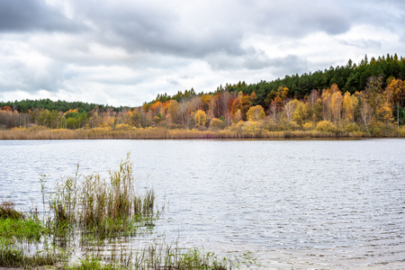 Wild lake landscape and autumn forest with colorful trees Stock Photo