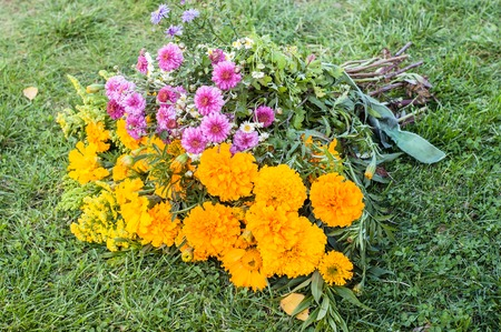 Autumn flowers bouquet. Aster and marigold. 版權商用圖片 - 107592985