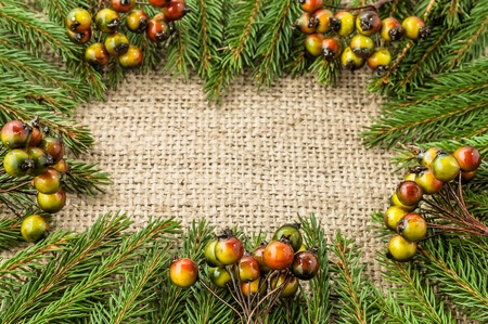 Decoration for christmas, green fir background, overhead