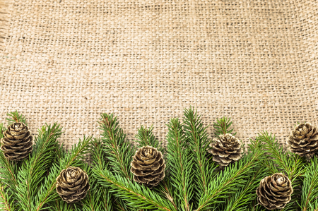 Green christmas tree branch with pine cones on rustic background Reklamní fotografie