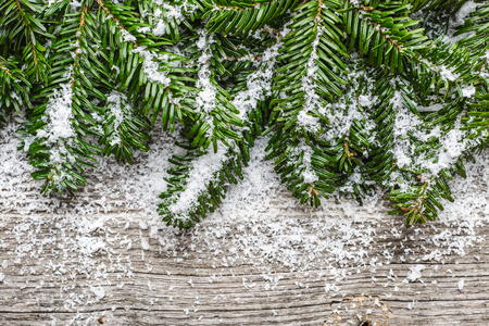 Christmas fir tree and snow on wooden background