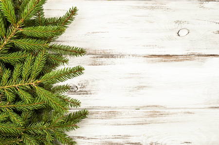 Green fir branch on white wooden background