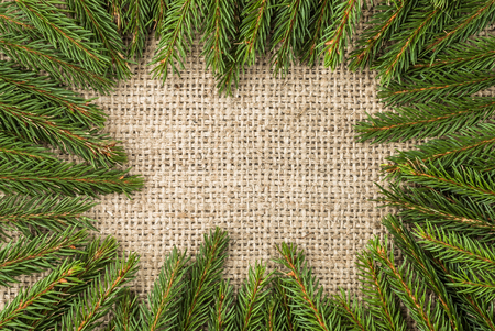 Green christmas border with fir branch on rustic background