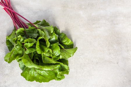 Bio vegetables. Fresh leaves of beets, green freshly harvested beet leafs bunch. Stock Photo