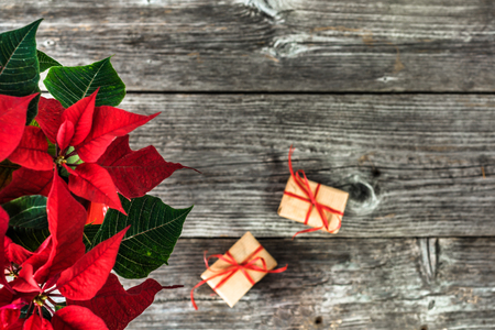 Red poinsettia and christmas gift boxes, minimal composition on wooden background
