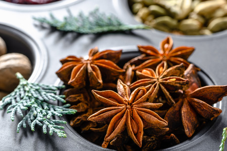 Christmas spices - anise star, closeup