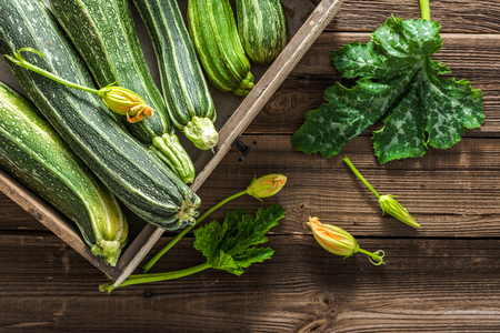 Fresh organic zucchini in wooden box, vegetable harvest