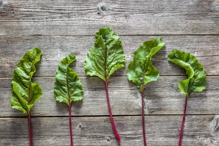 Bio food. Fresh green leaves of beet. Organic produce on wooden background. Stock Photo