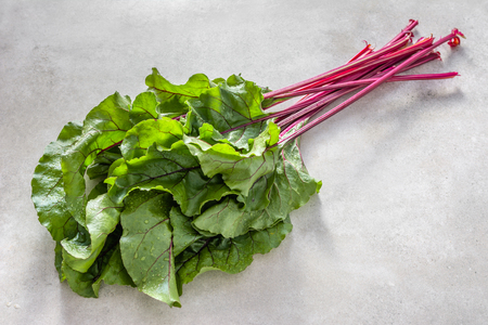 harvested organic produce - farm fresh leaves of beet, green leafs and red stem