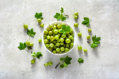 Green berries of fresh gooseberry, summer harvest of gooseberries, leaves and berry in a bowl Reklamní fotografie