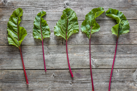 Fresh green leaves of beet. Organic vegetables on wooden background.