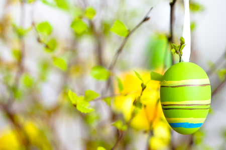 Background with easter egg, decoration painted in green and yellow 写真素材