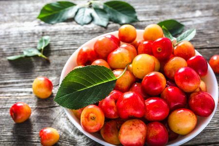 Colorful cherries, fresh sweet cherry fruit freshly harvested in the summer Stockfoto