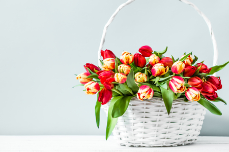 Basket with flowers on bright background. Mothers day tulip gift. Stock Photo