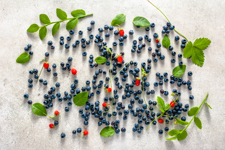 Fresh blueberries, top view. Blue berry with plants and wild strawberry, fruit mix. Stockfoto