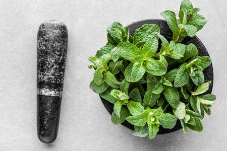 Green organic spearmint or fresh mint leafs in mortar on grey background Banco de Imagens - 123009703