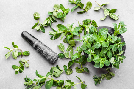 Green organic mint or peppermint, fresh mint leaves, top view Banco de Imagens - 123337136