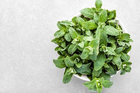Green organic spearmint. Fresh mint leafs in bowl on grey background Banco de Imagens - 123337558