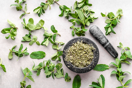 Green fresh mint leaves and dry herb of mint, flat lay, top view