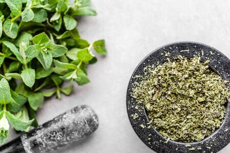 Green fresh mint leaves and dry herb of mint, top view