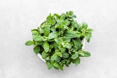 Green mint leaves or peppermint, fresh mint, top view