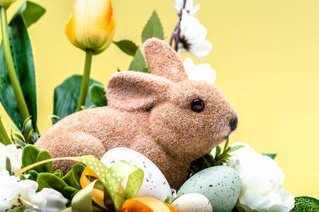 Easter rabbit, spring easter background