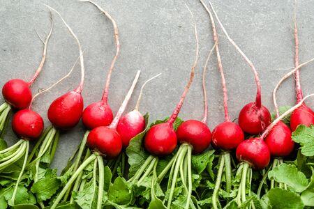 Fresh red radish, organic freshly harvested garden produce