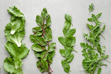 Fresh young baby leafs. Freshly harvested green salad leaves. Beet, arugula, lettuce and baby spinach. 版權商用圖片