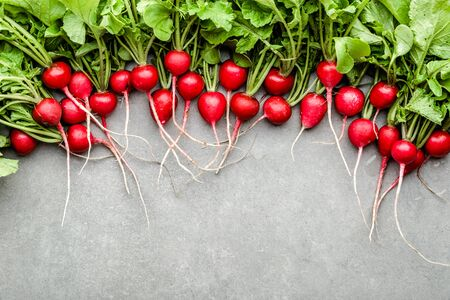 Fresh red radish on white background. Freshly harvested garden radishes. Organic vegetable harvest.