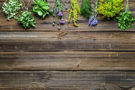 Assorted herbs from the garden on wooden table. Fresh herb on wood.