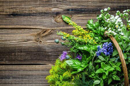 Assorted garden fresh herbs on wooden background