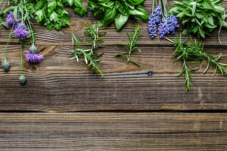 Fresh herbs from the garden. Rosemary, mint, lavender, parsley and basil herb, background with copy space.