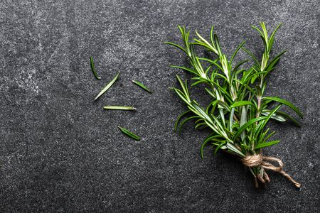 Fresh rosemary plant. Bunch of rosemary herbs on black background.