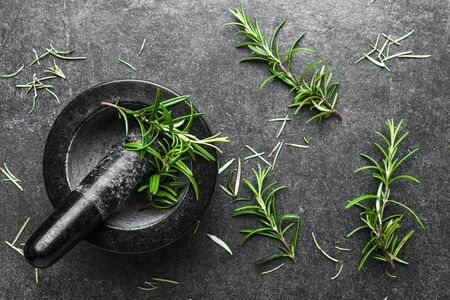 Black mortar with fresh rosemary herb on dark background