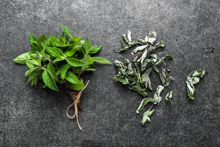 Garden herbs. Fresh mint and dried mint leaves on gray background.