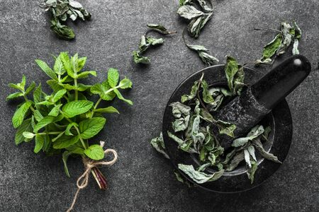 Garden herbs. Green fresh mint leaves. Bunch of mint and dried mint on dark background. Reklamní fotografie