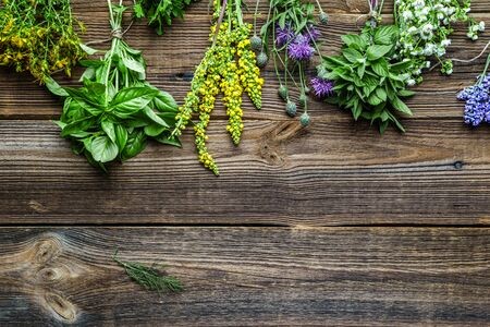 Bunches of fresh herb from the garden. Different herbs, top view. Reklamní fotografie