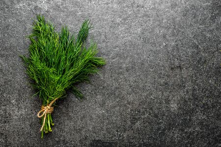 Green herbs. Fresh dill herb on black background