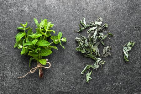Dried herb of mint, fresh leaves and dry mint on dark background