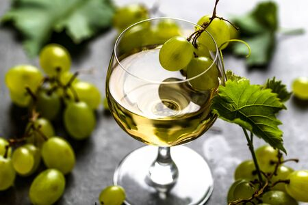 Glass of wine and white grapes freshly harvested in winery