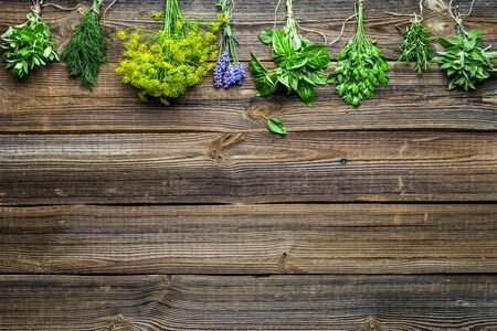 Assorted garden fresh herbs on wooden background