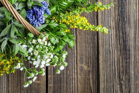 Variety of herbs, fresh garden herb on wooden table Banco de Imagens
