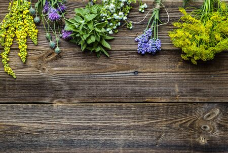 Assorted herbs from the garden on wooden table. Fresh herb on wood, top view Banco de Imagens