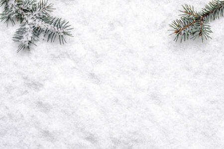 Sfondo bianco di Natale con neve e ramo di albero di Natale, piatto, vista dall'alto