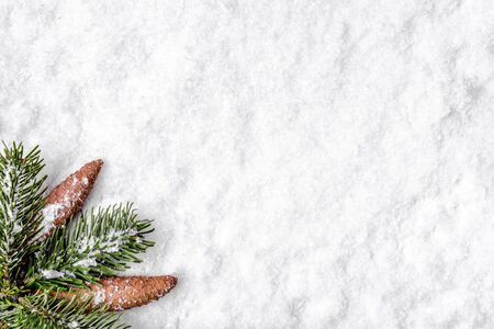 Christmas background with snow and winter fir tree branch, flat lay, top view Stockfoto