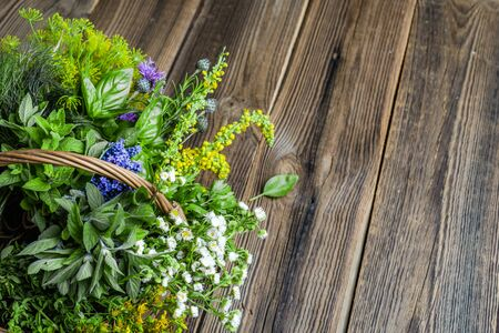 Fresh herbs from the garden on wooden table. Various herb in the basket.