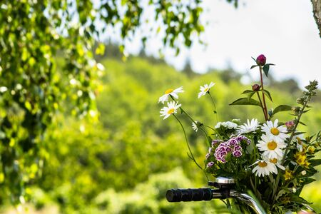 Bunch of flowers in a basket of bike with the handlebars on a blurry green garden background Stockfoto