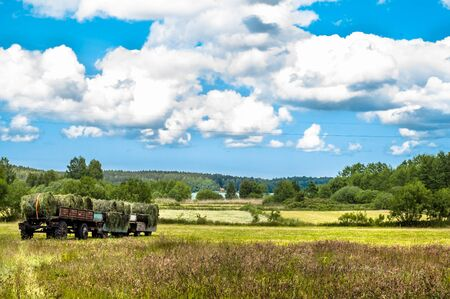 Landscape with haymaking. The trailer of hay in a field. Fields and meadows at summer, the idyllic rural landscape and agricultural. Blue sky with clouds and sunny day.