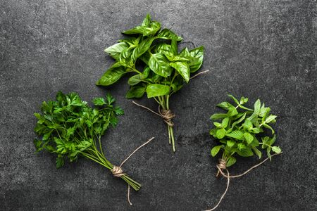 Freshly harvested herb, green bunches of herbs from the garden on dark background