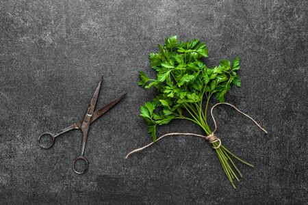Freshly harvested herb of green parsley, fresh garden herbs on dark background Banco de Imagens